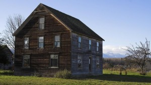 Delapidated House