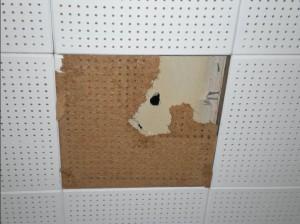 ceiling-tile-asbestos-asbestorama-flickr
